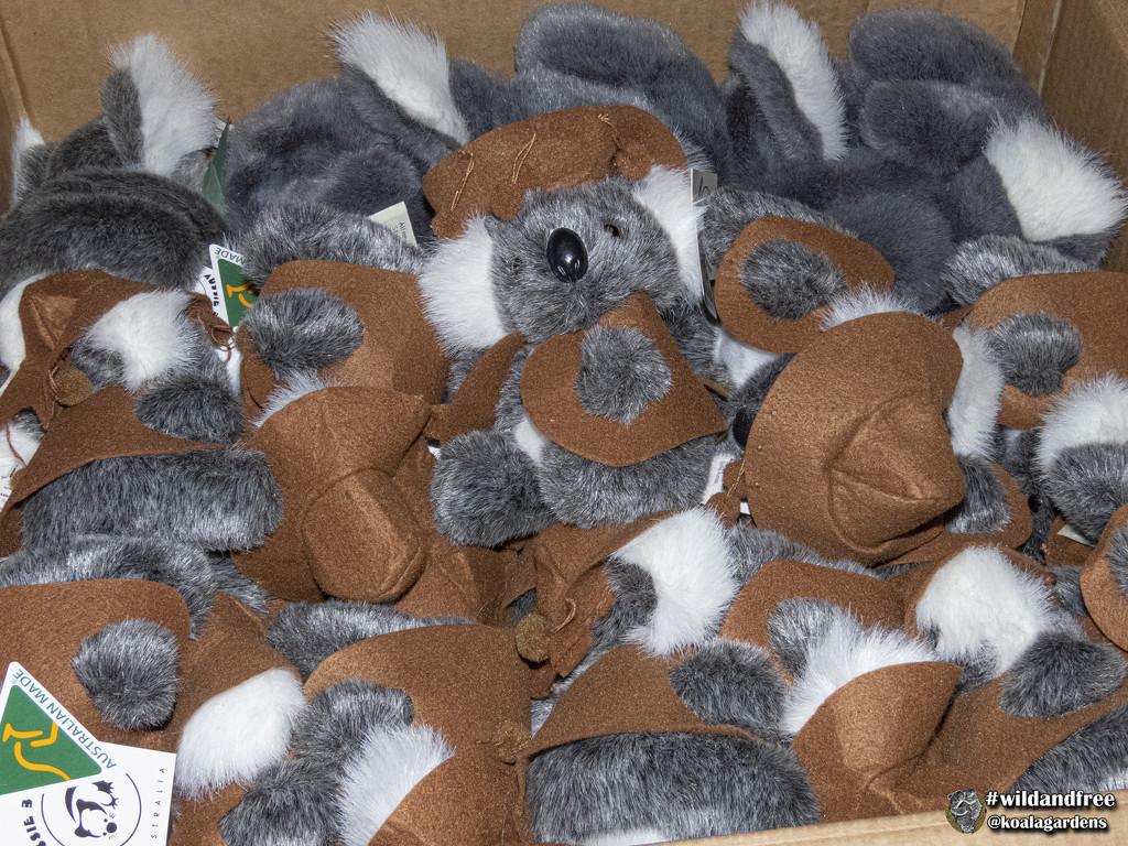 peek-a-boo JordanT by koalagardens