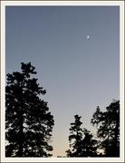 19th Nov 2020 - Overhead at 5:05 pm November 19