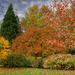 1120 - Emmetts Garden