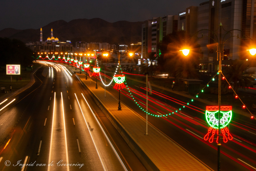 Festive lights are on!  by ingrid01