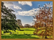 21st Nov 2020 - Delapre Abbey Park,another view.