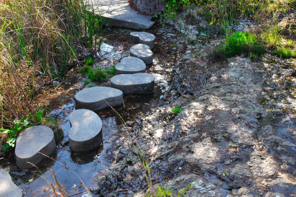 Stepping Stones by judyc57