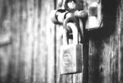 21st Nov 2020 - Lockdown