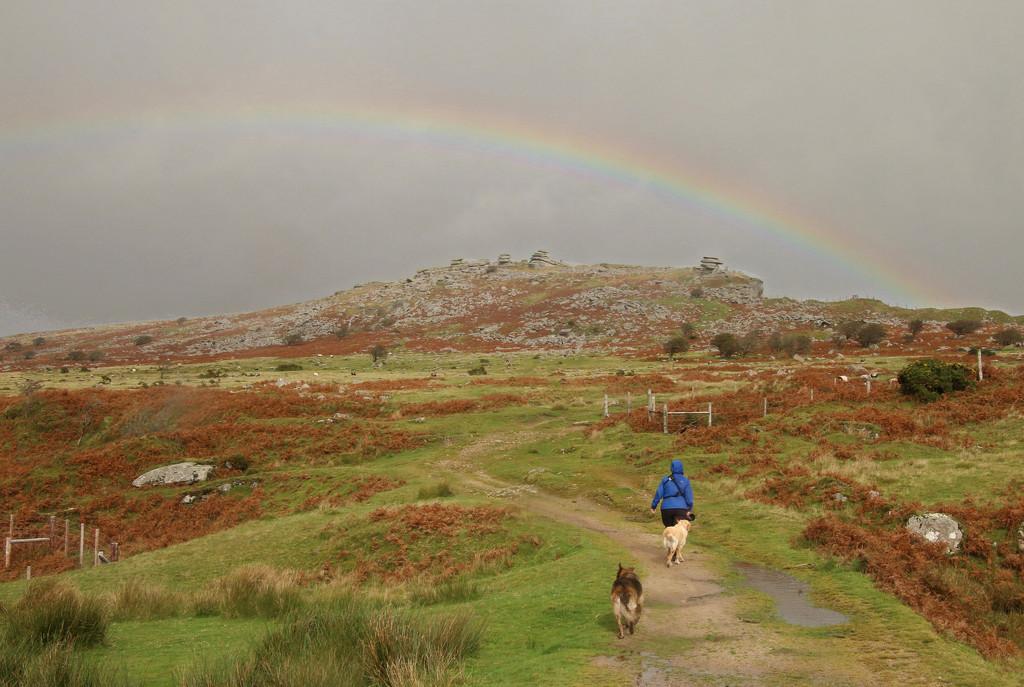 Treasure Hunt by shepherdman