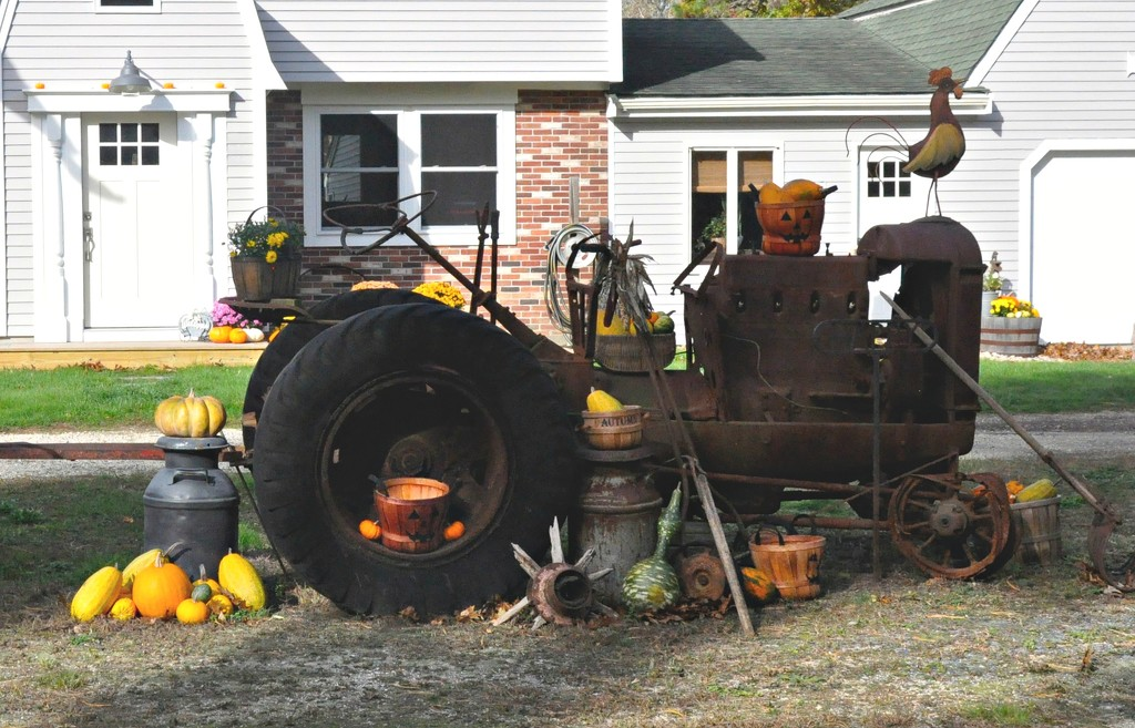 Pumpkins, squash and an antique tractor... by sailingmusic