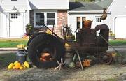 21st Nov 2020 - Pumpkins, squash and an antique tractor...