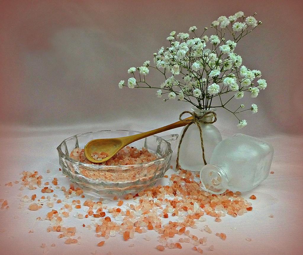 A  Pinch of Salt . by wendyfrost