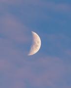 20th Nov 2020 - sunset moon