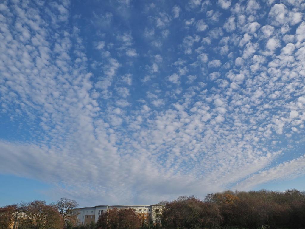 Big Sky by jesika2