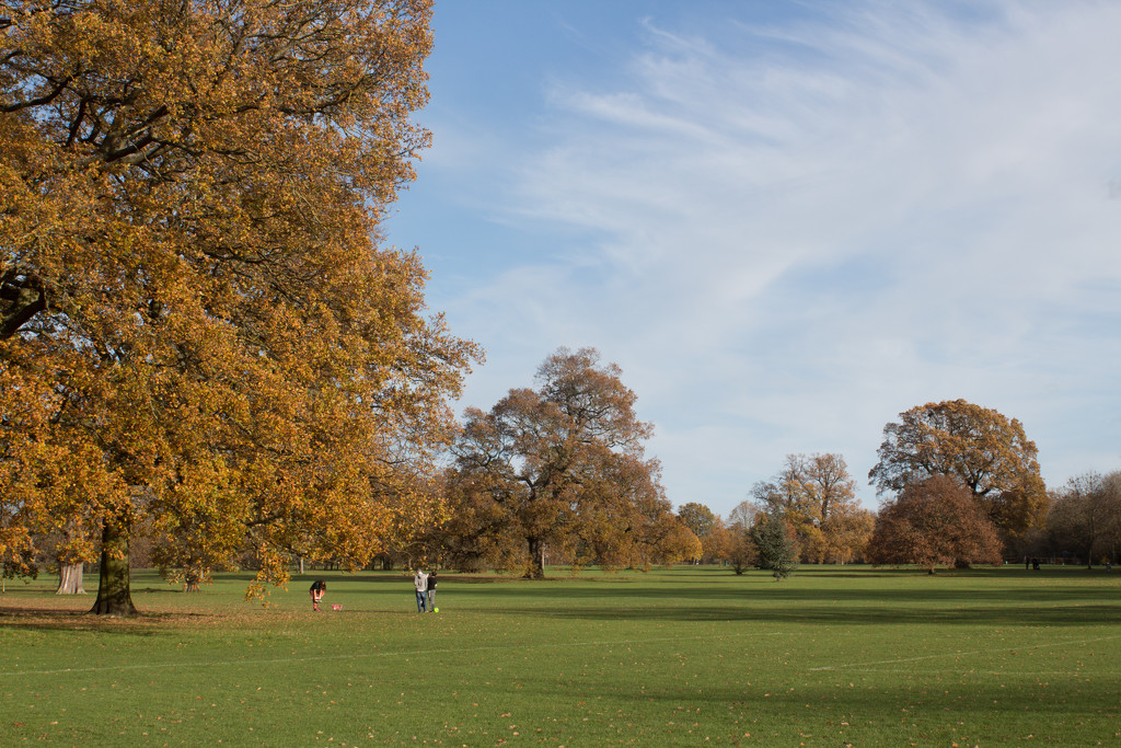 A beautiful day in Priory Park by busylady