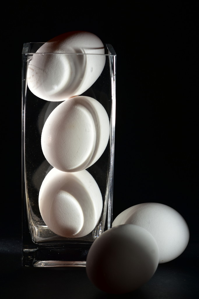 Five Eggs by jayberg