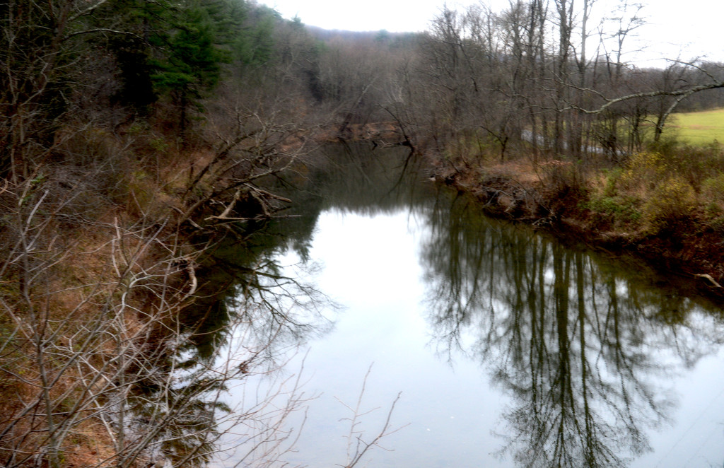 Creek by francoise