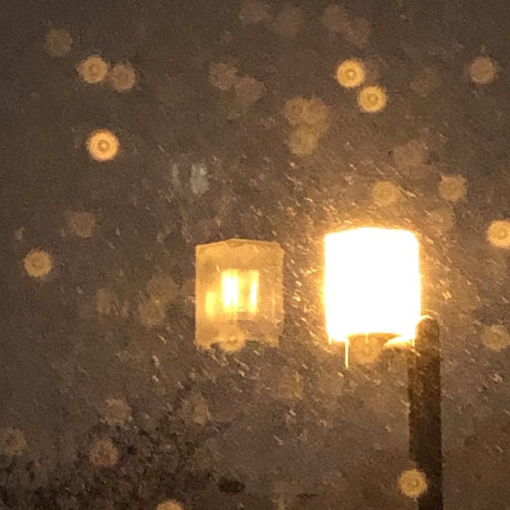 Tempête de novembre  by maudephotos