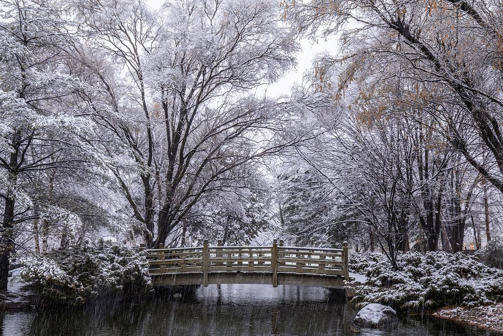 Kariya Park Winterland  by pdulis