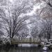 Kariya Park Winterland