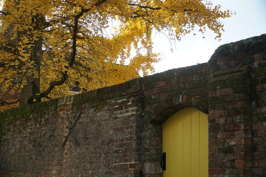 the yellow door by quietpurplehaze