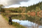 22nd Nov 2020 - Nice stroll around Entwistle Reservoir yesterday