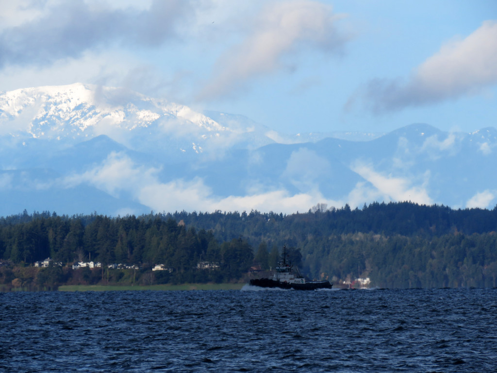Olympic Mountains by seattlite