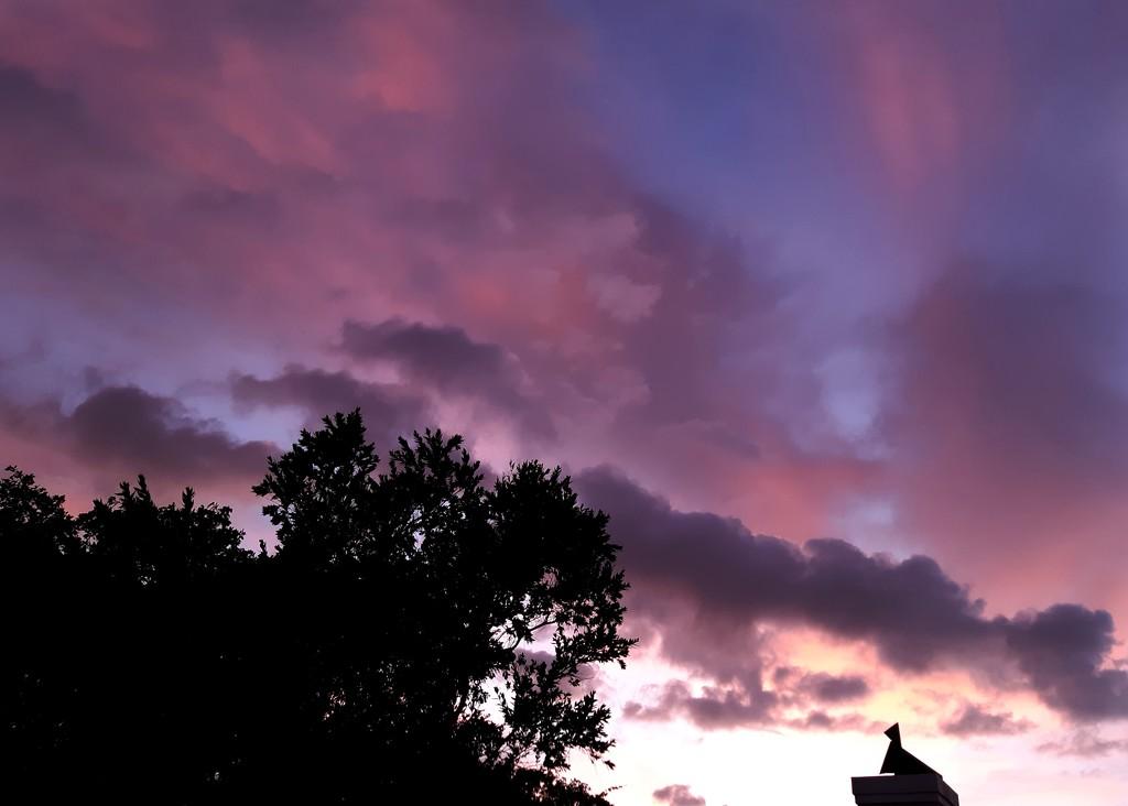At Sunrise  by salza