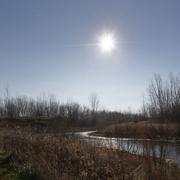 22nd Nov 2020 - pond under a sunburst