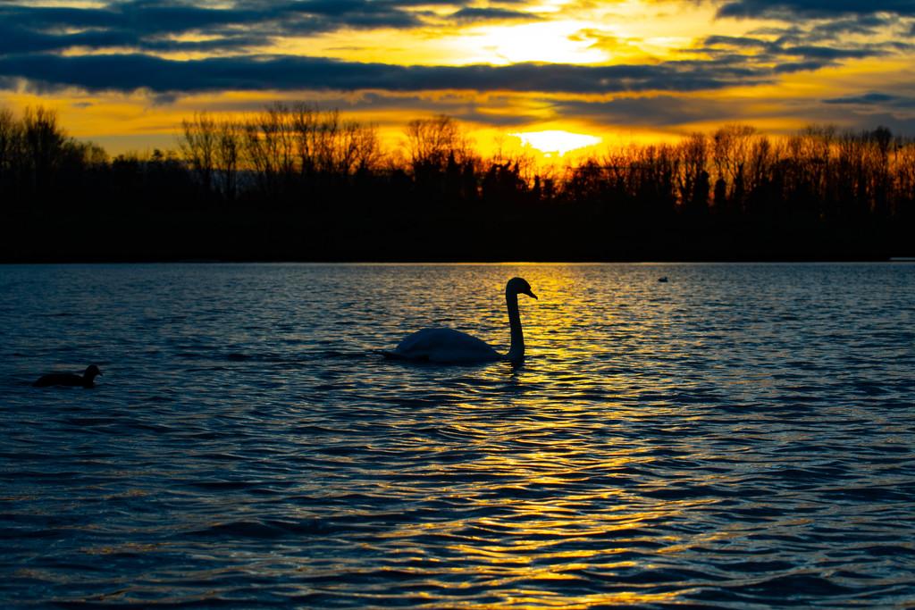 Sunset over Priory Park by stevejacob