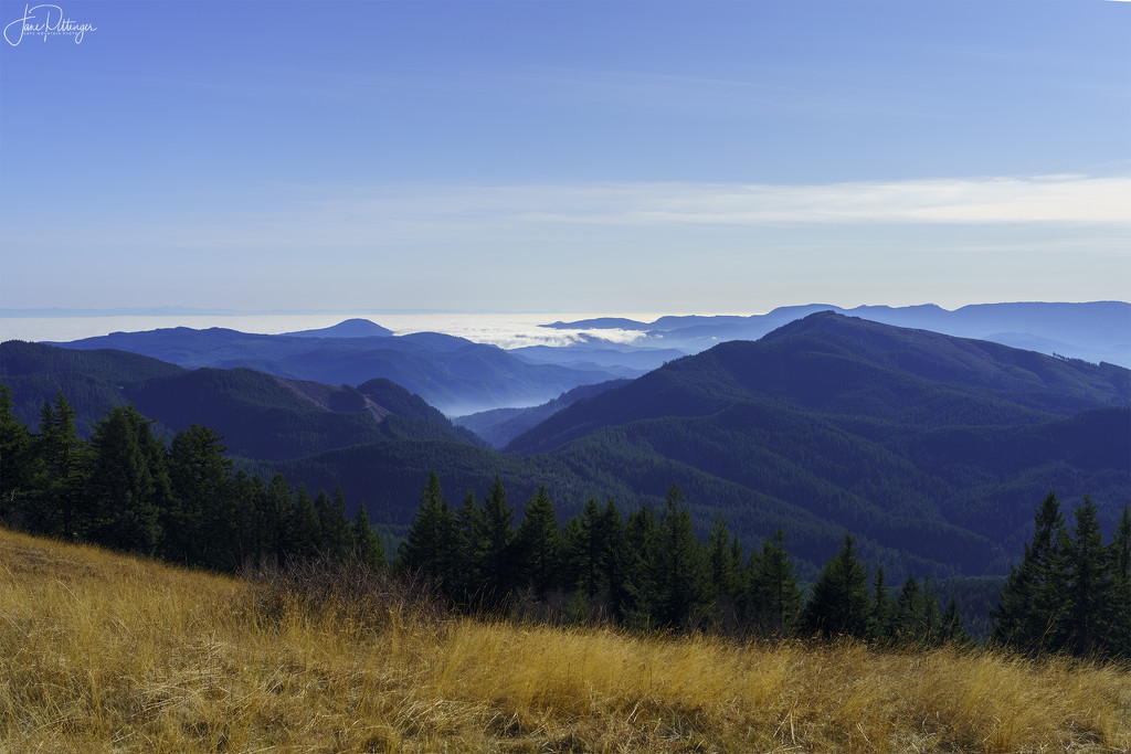 Hills and Clouds From Mary's Peak by jgpittenger