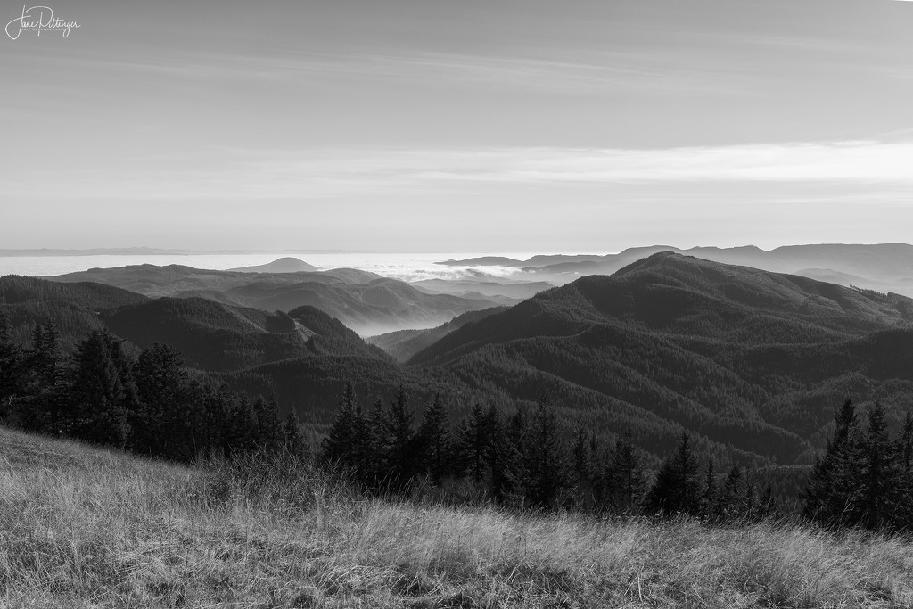 Hills and Clouds From Mary's Peak B and W by jgpittenger