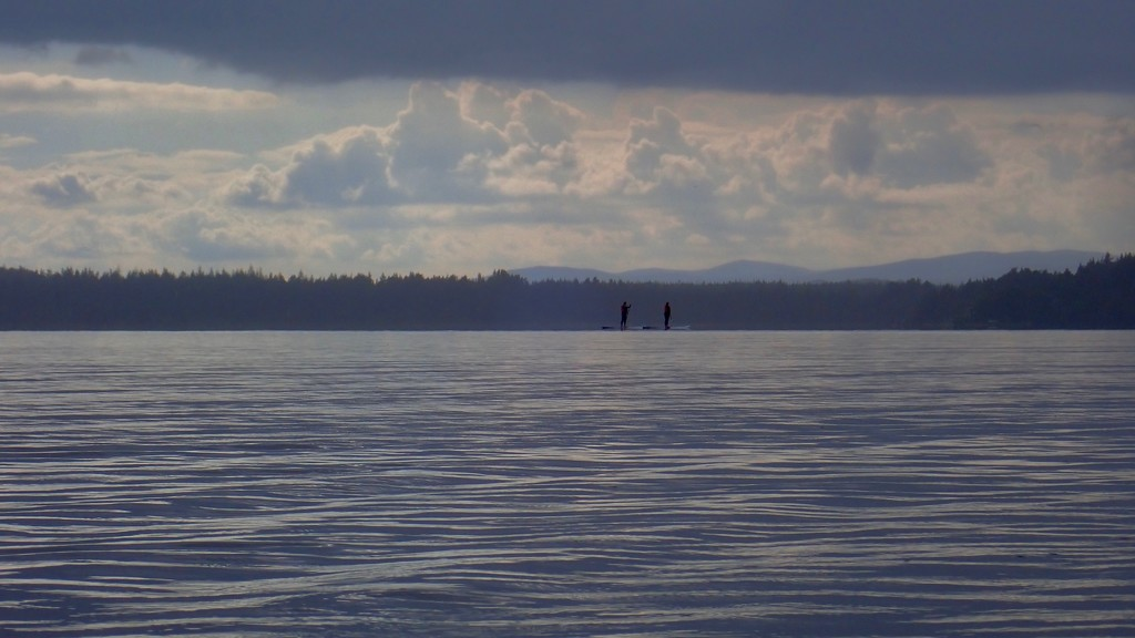 PASSING PADDLEBOARDERS by markp