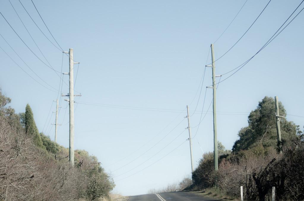 Roads Taken-25 by annied