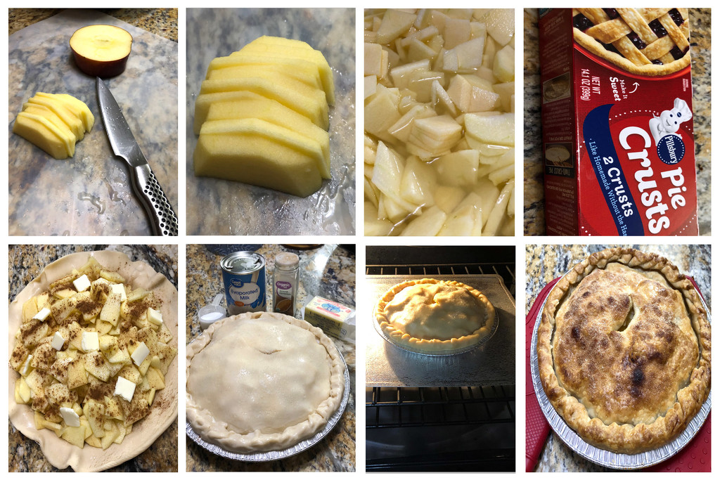 Faith's Old Fashioned Apple Pie by homeschoolmom