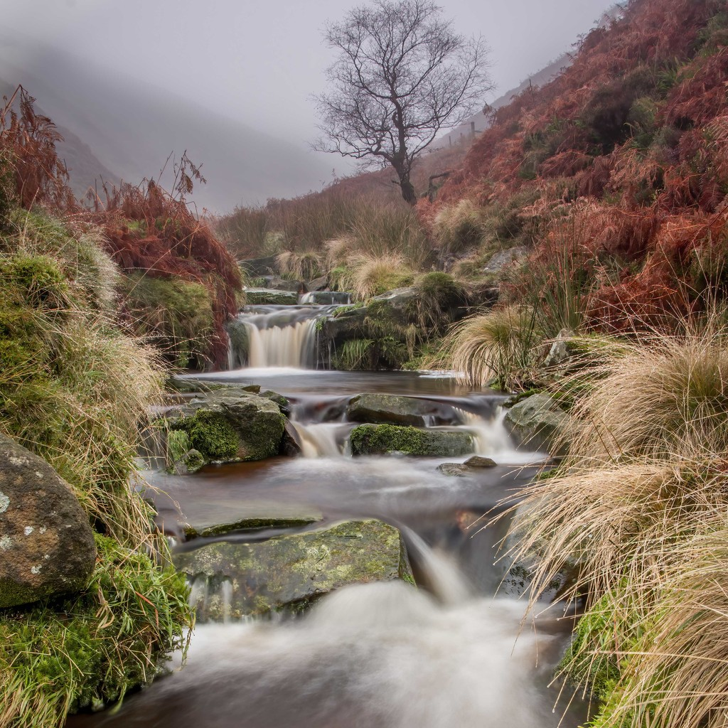 Peak District Waterfall  by shepherdmanswife