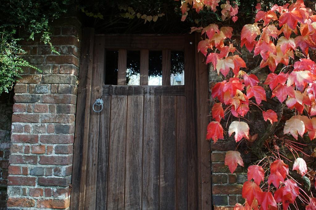 autumn door by quietpurplehaze