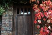 24th Nov 2020 - autumn door