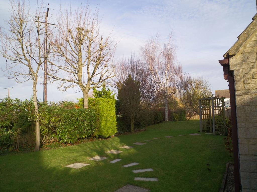 My usual Tuesday garden shot by jon_lip