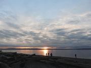 24th Nov 2020 - Sunset Silhouettes
