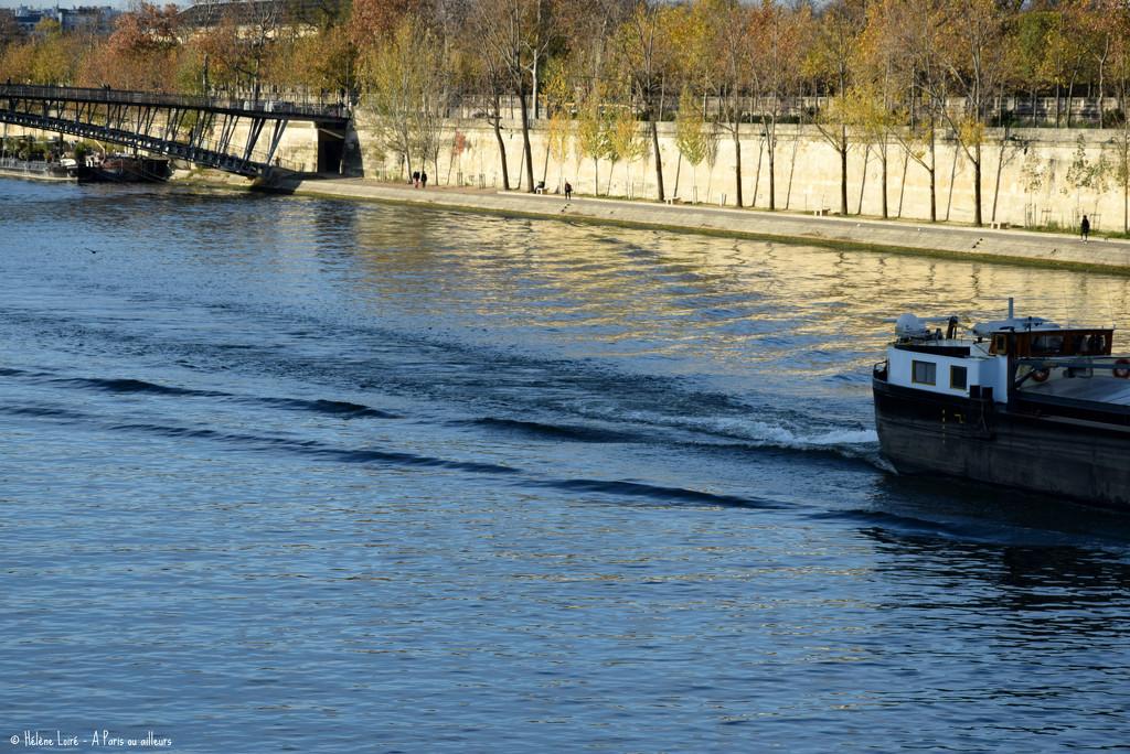 la Seine by parisouailleurs