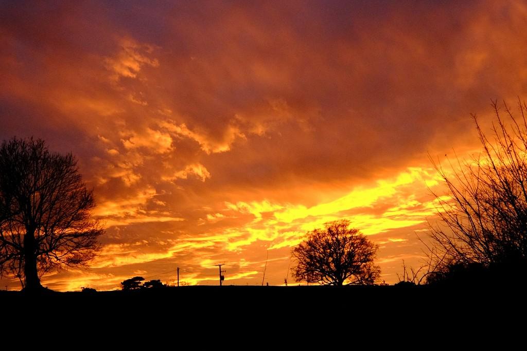 Sunset by allsop