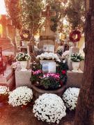 25th Nov 2020 - Family graveyard.