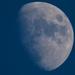 The Moon Saga - Chapter 2