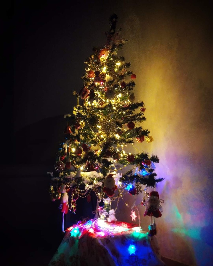 329/365⁴ : one month to Christmas by jackhoo