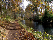 17th Nov 2020 - Nov 17th Basingstoke Canal