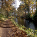 Nov 17th Basingstoke Canal