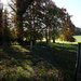 15th Nov Walk at Hinton Ampner