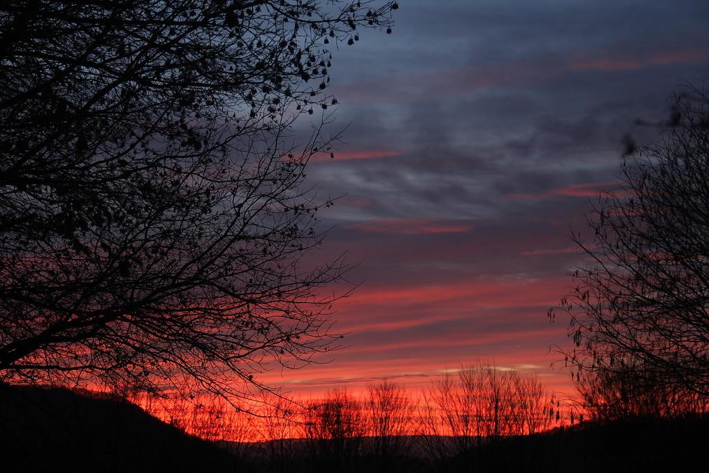 Morning Ablaze by calm