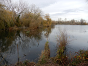 25th Nov 2020 - Paxton Lakes