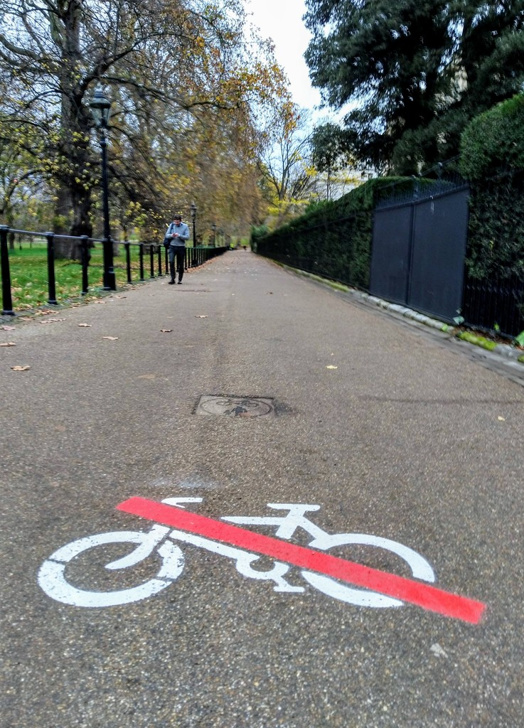 No cycling by boxplayer