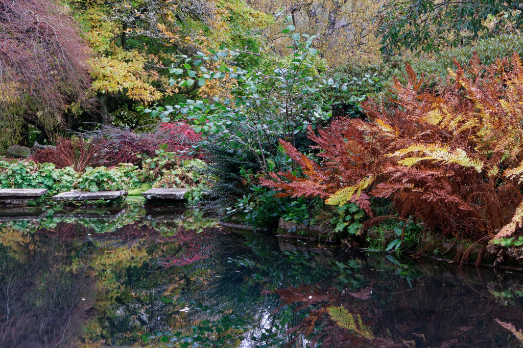 1125 - Fish Pond at Chartwell by bob65