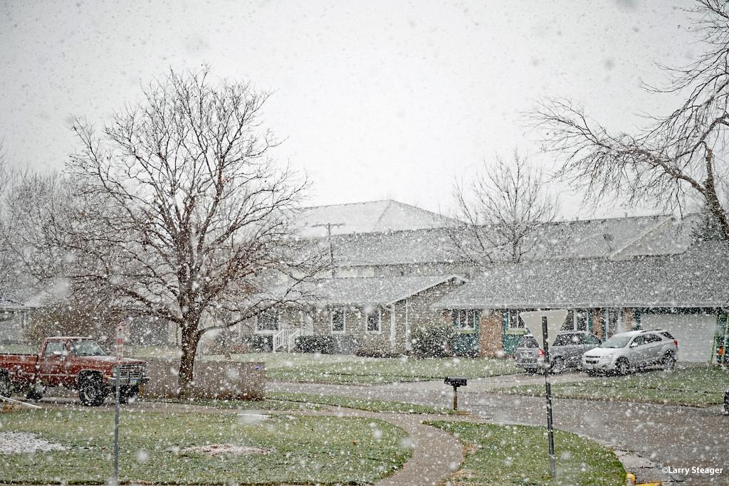 Let it snow by larrysphotos