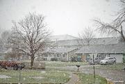 25th Nov 2020 - Let it snow