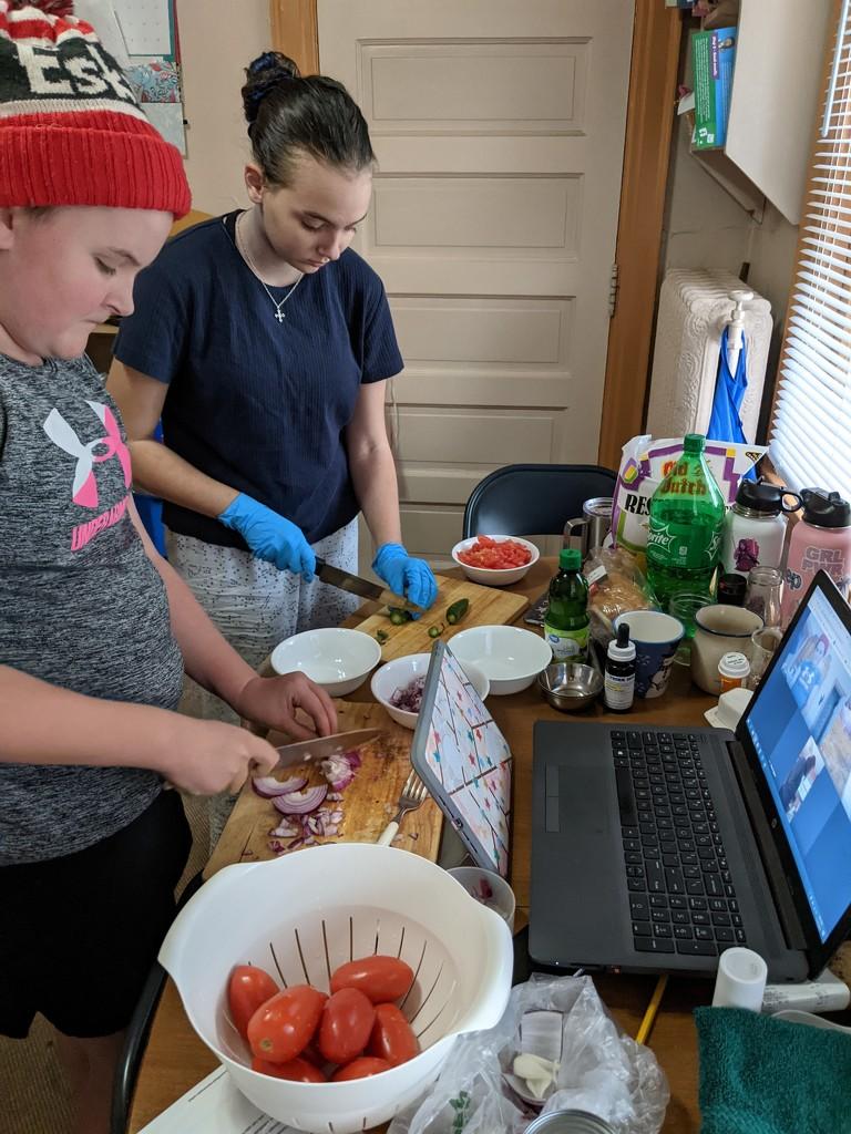 Virtual Girl Scout Meeting by prairiesmoke